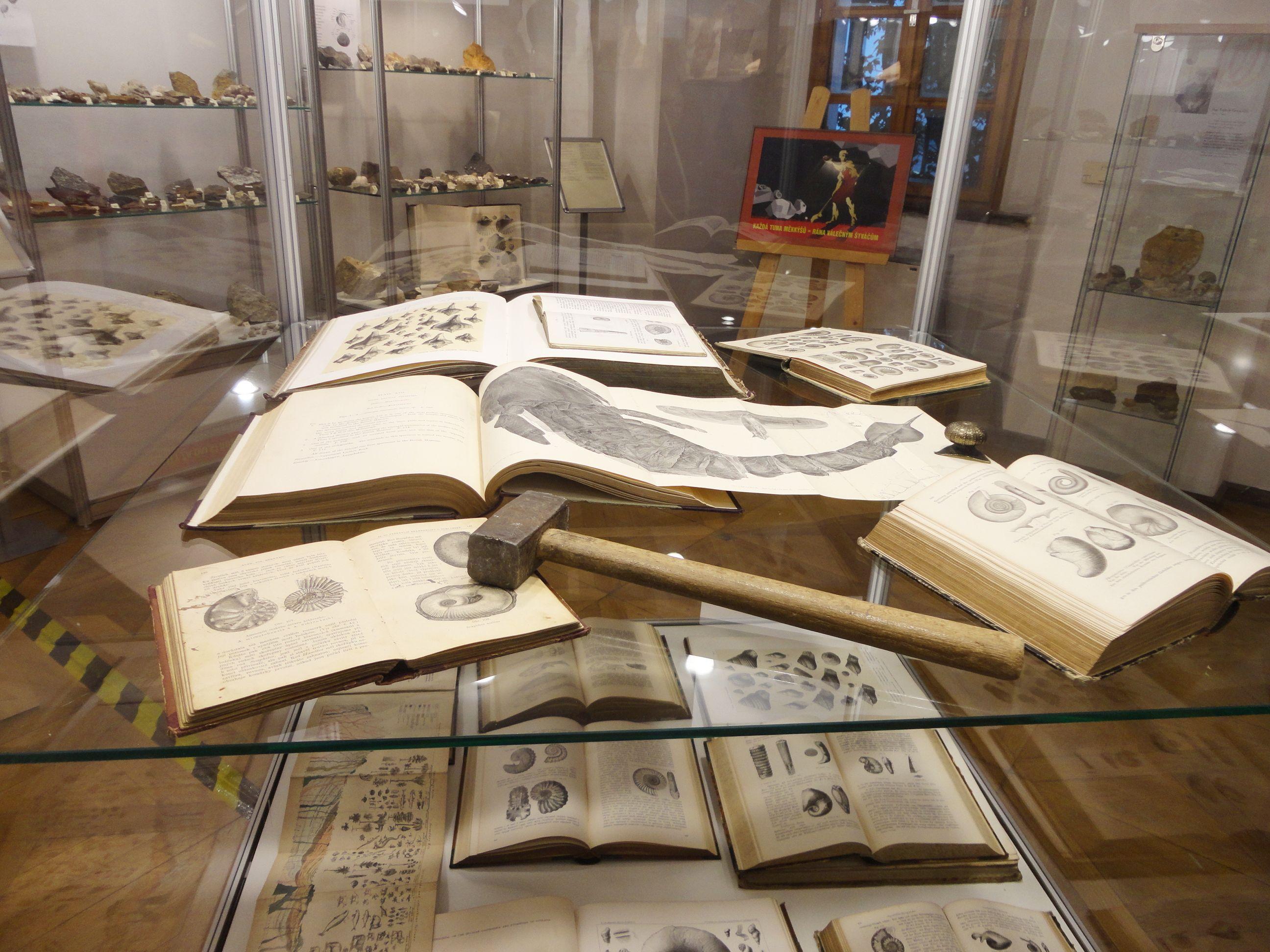 Výstava fosílií v Berouně zahájena